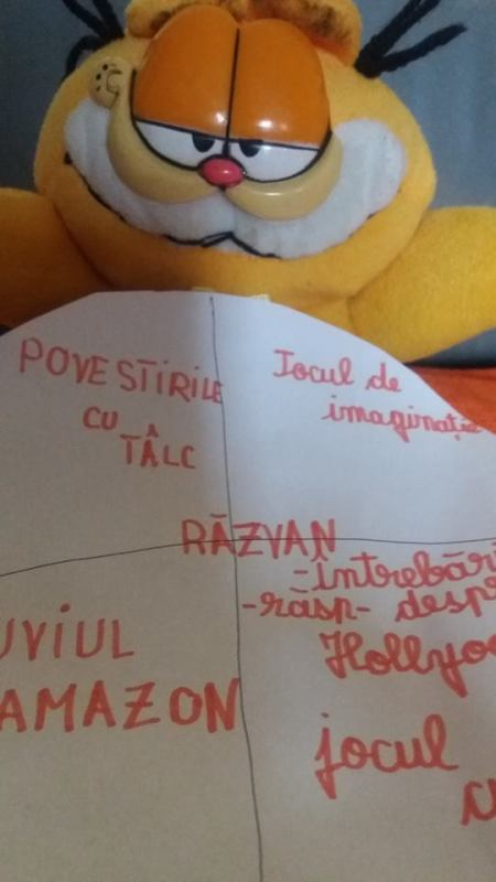 garfield-feedback-razvan
